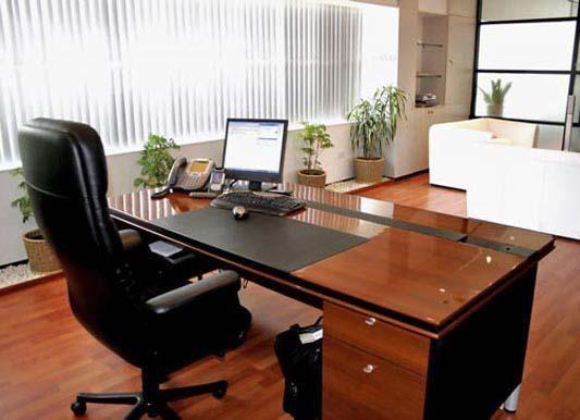 Thiết kế phòng giám đốc tuổi Ngọ cần chú ý đến trang trí, lựa chọn nội thất theo màu sắc, hình dáng và sắp xếp theo hướng làm việc hợp cung mệnh